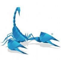 Scorpion Design - Professional Website Design